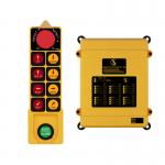 Sky 401 Single Radio Remote Control System